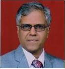 Prof. S Mohan Karuppayil